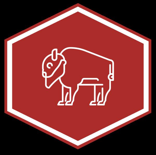 Babybuffalo